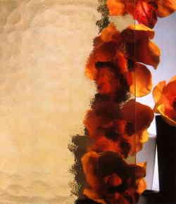 Ornamentglas SGG Kathedral Min ® (Kathedral kleingehämmert)