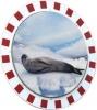 Anti-Frost-Verkehrsspiegel 600 mm rund Rahmen rot/weiß 5 Jahre Garantie